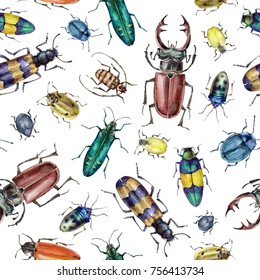 Watercolor seamless pattern with colorful bugs backdrop. Art on white background beetles insect