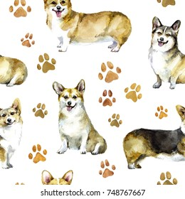 Watercolor seamless pattern of corgi with paw prints. Puppy dog background