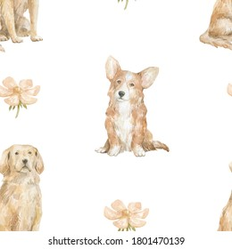 Watercolor seamless pattern with cute domestic dog. Welsh corgi and golden retriever dogs, flowers. Cute nursery background for children textile, print, cover,wallpaper