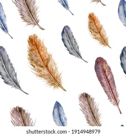 Watercolor seamless pattern with feathers. White background