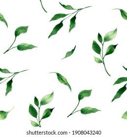 Watercolor seamless pattern with greenery, green leaves and branches on a white background. For textile, wrapping, greeting cards, wallpapers.