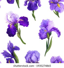 Watercolor seamless pattern with irises on the white background. Pattern with purple flowers