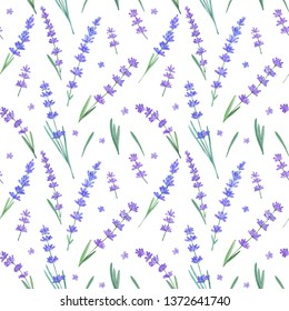 Watercolor seamless pattern of lavender flowers on white background