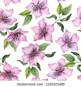 Watercolor seamless pattern of rhododendron flowers, hand drawn floral illustration, pink flowers with leaves isolated on a white background.
