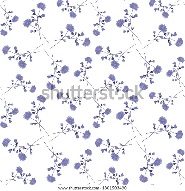 Watercolor seamless pattern of small wild blue flowers on a white background - D