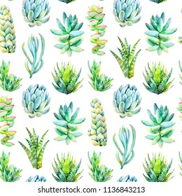 Watercolor seamless pattern with succulent plants