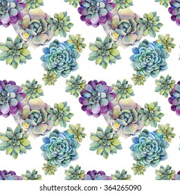 Watercolor seamless pattern with succulents. Hand drawn raster illustration