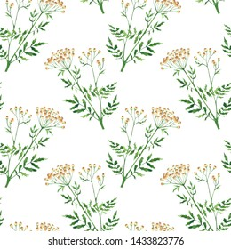 Watercolor seamless pattern with tansy, wildflowers on white background. Hand drawn botanical illustration. Perfect for textile, wrapping paper