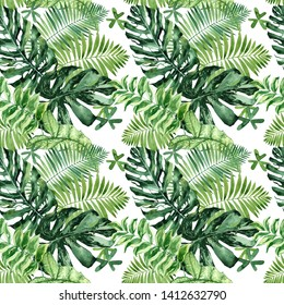 Watercolor seamless pattern with tropical leaves and houseplants leaves. Greenery. Succulent. Floral Design element. Perfect for invitations, cards, prints, posters