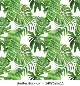 Watercolor seamless pattern, tropical leaves on an isolated background, watercolor, painting, botanical illustration, floral design, palms, monstera