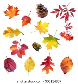 watercolor set of autumn leaves