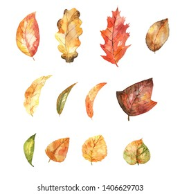 Watercolor set of autumnal leaves. Bright colors. Hand painted isolated elements.