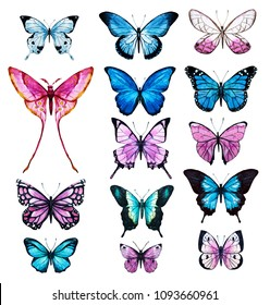 Watercolor set of butterflies, blue and pink butterflies on a white background