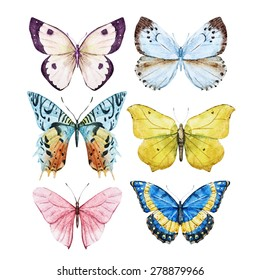 watercolor set with colorful butterflies