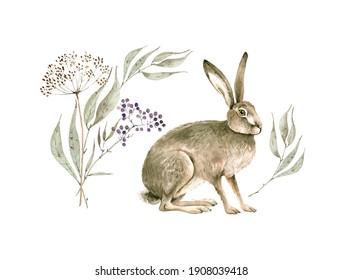 Watercolor set of cute hare with botanical elements, branches and berries. hand painted on white background