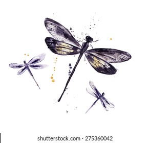 Watercolor set of dragonflies
