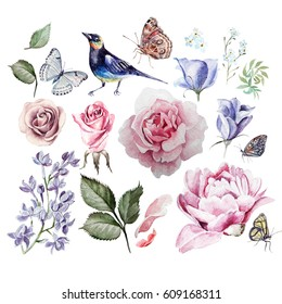 Watercolor set with flowers of rose, lilac, eucalyptus, peony and forget-me. Butterflies and bird. illustrations
