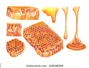 Watercolor set of flowing honey and honeycombs. Hand painted isolated design