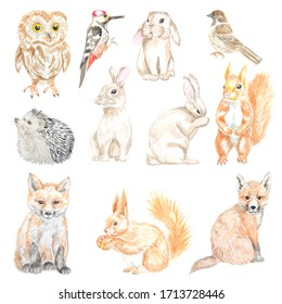 Watercolor set of forest animals. Great for printing, textile design, web sites, souvenirs and other creative projects.