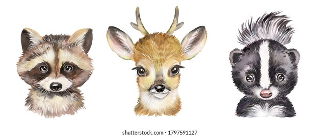 Watercolor set with forest animals. Raccoon, deer, skunk, cute baby animals.
