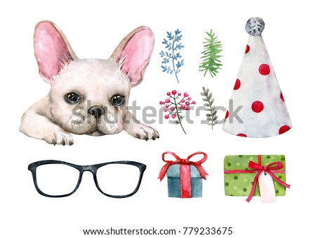 Watercolor set with a French bulldog, gifts, a hat, glasses, plants.