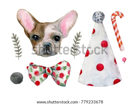 Watercolor set with a French bulldog, gifts, hat, plants, etc. Excellent for the design of postcards, posters, stickers and so on. - Illustration