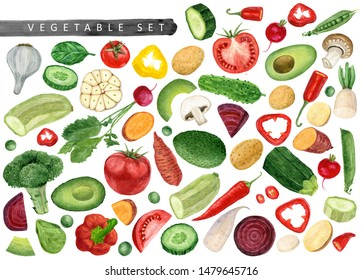 Watercolor set of fresh vegetables isolated on white background