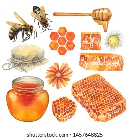 Watercolor set of honey bottles, caps, dripper, honeycombs, bees and meadow flowers isolated on white background. Hand painted isolated design