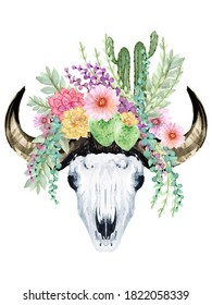 Watercolor set of Horn bull buffalo skull head skeleton and cactus succulent plant isolated on white background Bohemian illustration style for your projects, greeting cards ,textile fabric