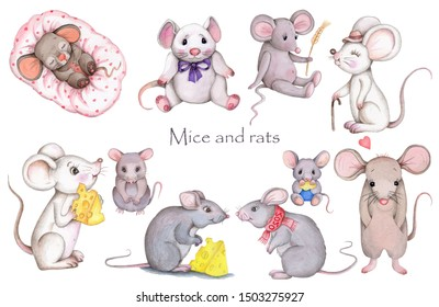 Watercolor set of illustrations of cartoon mice and rats, isolated on white. Hand drawn water color art, toy animals.