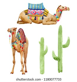 Watercolor set of isolated illustrations, Camel with saddle and ornaments, cactus plant