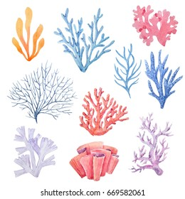 Watercolor set of isolated objects drawing bright algae and corals