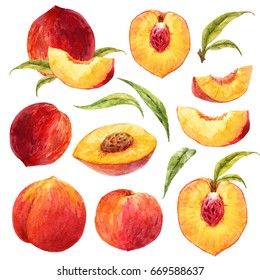 Watercolor set of isolated peach objects, peach half with stone, leaves and individual elements