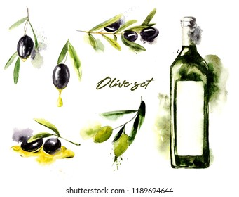 Watercolor set of olive branches with olives and bottle with oil on white background. Hand drawn watercolor illustration with splashes