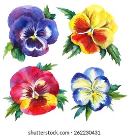 Watercolor set with pansies. Hand drawn raster illustration