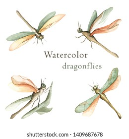Watercolor set of realistic dragonflies. Isolated illustrations of insects. Perfect for scrapbooking, paper packaging or textile.