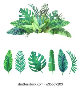 Watercolor set of tropical leaves.