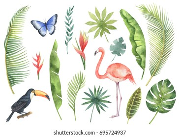 Watercolor set tropical leaves and branches isolated on white background. Illustration for design kitchen, market, textiles, decorations, cards.