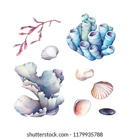 Watercolor set of underwater life objects. Hand painted underwater branches isolated on white background. Watercolor set with coral and seaweed and stones