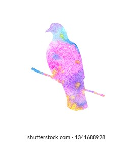 Watercolor silhouette of bird sitting at tree branch, sketch of dove, hand drawn songbird, isolated nature design element