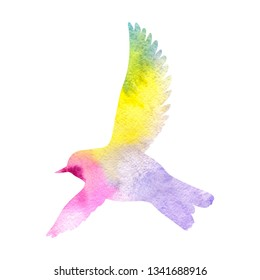 Watercolor silhouette of flying bird, sketch of sparrow, hand drawn songbird, isolated nature design element