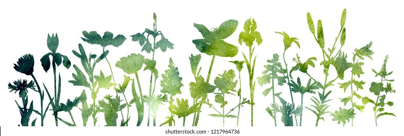 watercolor silhouettes of wild flowers, floral composition, hand drawn botanical illustration
