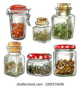 Watercolor sketch of food. Glass jars with spices, herbs, nuts and peppers. Figure black line on a white background.