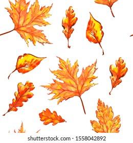 watercolor sketch pattern autumn leaves golden orange red oak maple birch