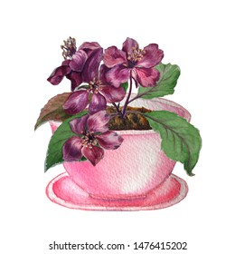 Watercolor sketch of pink flower pot with bright flowering branch isolated on white.