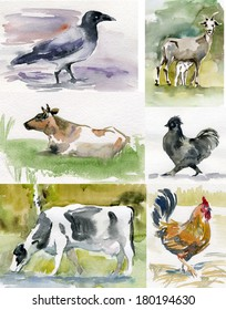 watercolor sketches pets, animals, farm