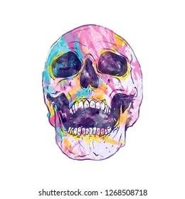 Watercolor skull ,hand-drawn illustration