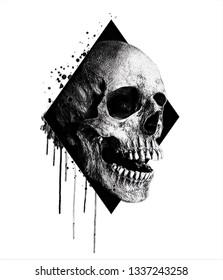 Watercolor skull illustration.