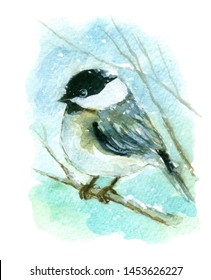 Watercolor small Bird Winter Chickadee On Branch with Snow Hand Drawn Painting of Wildlife Illustration isolated on white background