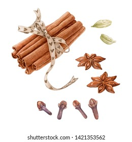 Watercolor spices isolated on white background. Anise, clove, cinnamon sticks, cardamon.